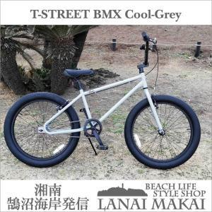 T-STREET BMX クールグレー(マット) レインボー T-STREET 24インチ ファット...