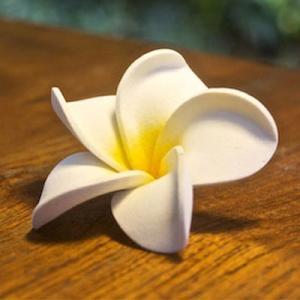 アジアン雑貨 プルメリア 造花 インテリア バリ アートフラワー ホワイト z010203|landmark