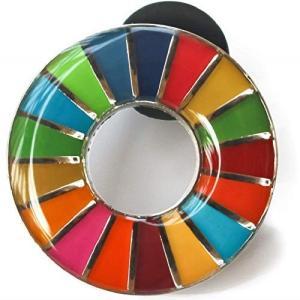 SDGs ピンバッジ 国連 バッチ バッジ (丸み仕上げ(2個))|lanui