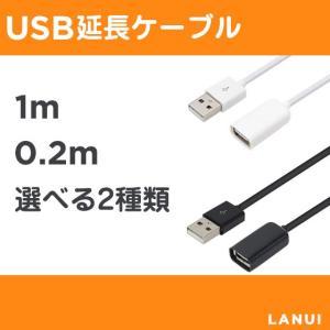 USB延長ケーブル 1m/20cm Lightningケーブ...