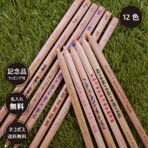 名入れ 色鉛筆 はっぴーねーむ色鉛筆 12色 卒園 記念品 オリジナル いろえんぴつ 木目 ウッド|lapiz