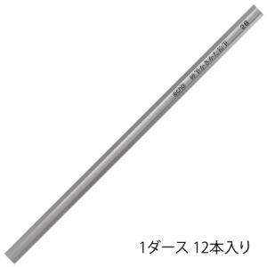 【名入れ対象商品】硬筆かきかた鉛筆2B シルバー軸|lapiz