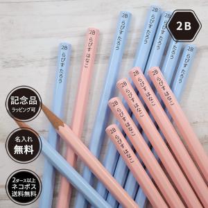 鉛筆 名入れ パステルカラー鉛筆  2B 卒園 記念品 オリジナル えんぴつ ブルー ピンク|lapiz