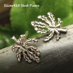 シルバーピアス レディース 小さな木 落ち葉 葉っぱ スタッドピアス|laplateriashu
