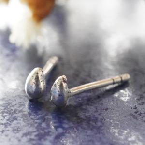 シルバーピアス レディース 花 リボン 果物 ピアス (a-10-1)|laplateriashu