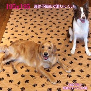 ベッドカバー 195x195cm 《ポイント10倍》 裏不織布 マルチカバー 正方形 大型犬サイズ 大判 larrys-company