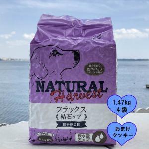結石ケア用 食事療法食 ナチュラルハーベスト フラックス 1.47KgX4袋 ポイント10倍 おまけ付き|larrys-company
