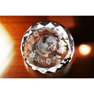 お手持ちの写真からオリジナル記念品を作成 Laser Crystal Art ペーパーウェイトタイプ ラウンドカット(Aサイズ)  光学ガラス製|laughs
