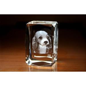 お手持ちの写真からオリジナル記念品を作成 Laser Crystal Art オブジェタイプ キューブ 24面カット  光学ガラス製|laughs