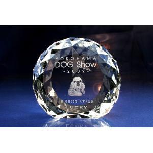 お手持ちの写真からオリジナル記念品を作成 Laser Crystal Art オブジェタイプ 円形ブリリアンカット自立型(Aサイズ)  光学ガラス製|laughs