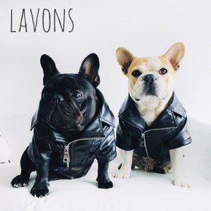 犬服 ペット服 ライダースジャケット 小型犬 中型犬 フレンチブルドッグ服 パグ服 チワワ服