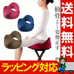 仙骨クッション 仙律 骨盤 猫背 姿勢 背筋 サポート 腰痛 クッション 座椅子 デスクワーク 腰の負担を軽減するクッション オフィスチェア 3D 高反発 送料無料|le-cure