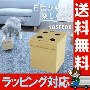 ノーズボックス 10個入 嗅覚を活かしたおやつ探しゲーム イヌのおもちゃ ペット用玩具 ドッグ 訓練 トレーニング しつけ 練習 教育 ワンちゃん NOSEBOX|le-cure