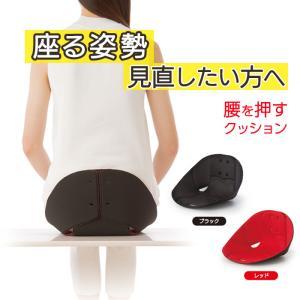 ボードクッション コシオス cosios クッション 腰 骨盤 椅子 姿勢 デスクワーク 腰痛 オフィス 座布団 骨盤を立てるクッション 腰当てクッション テレワーク|le-cure