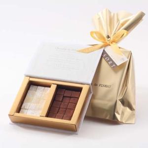 チョコレート ギフト 【ルピノ―】 パッションマンゴーの生チョコレート M le-pineau