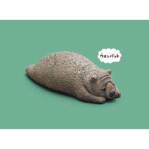 【ウォンバット】 パンダの穴 ZOO ZOO ZOO やるきが寝 lead-netstore