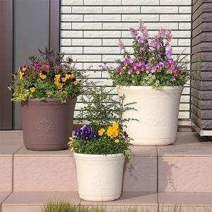 草花 寄せ植え シンプル セシルポット 29型 アップル