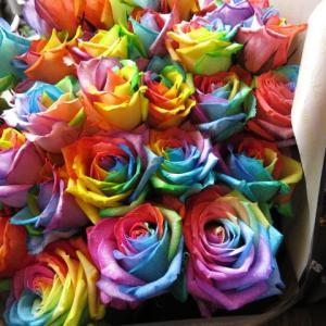 レインボーローズ バラ  フラワーギフト 花束  レインボーローズの花言葉は 「奇跡」「無限の可能性...