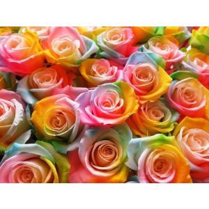 クリスマスプレゼント 花束 レインボーローズ  プリザーブドフラワー使用 枯れない 大輪レインボーローズ  50本 花束|leaves78|03