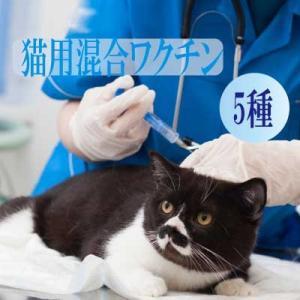 猫用5種混合ワクチン 表示金額は往診料とワクチン代を含む総額です【往診対応地域の方のみお買い上げ可能】|lechien-life