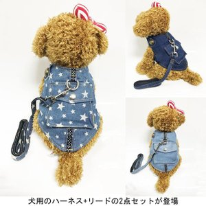 犬服 ハーネス&リード 2点セット デニム ドッグウエア 小型犬 ペット服 ジーンズ 中型犬 犬用 胴輪 ペット用品 ドッグ服 首輪|lefutur