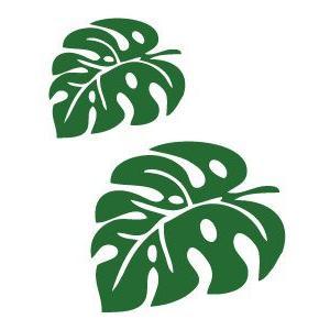 メール便可/ハワイアンステッカー/レイマイカイオリジナル/モンステラ 2サイズセット leimaikai-hawaii