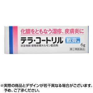 指定第2類医薬品 テラ・コートリル軟膏a 6g ×1個