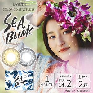 カラコン カラーコンタクトレンズ 度なし 度あり 1ヶ月 マンスリー SEA BLINK シーブリンク 1枚入 2箱