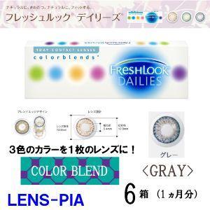 コンタクトレンズ ワンデー カラー チバビジョン フレッシュルック デイリーズ グレー 6箱 送料無料|lens-pia