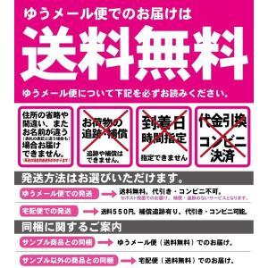 シルク愛用 100円送料無料 【初回限定・1世...の詳細画像1