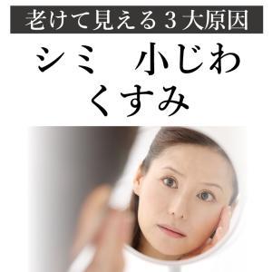 シルク愛用 100円送料無料 【初回限定・1世...の詳細画像4