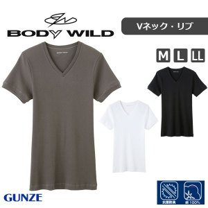 GUNZE グンゼ BODY WILD ボディワイルド スタンダード トップス(リブ) VネックTシャツ(M・L・LL)BWJ415J [m]|liberty-h