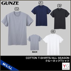 GUNZE グンゼ YG ワイジー COTTON T-SHIRTS ALL SEASON クルーネックTシャツ(M・L・LL)YV0513 [m]|liberty-h
