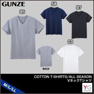 [メール便 15] GUNZE グンゼ YG ワイジー COTTON T-SHIRTS ALL SEASON VネックTシャツ(M・L・LL)YV0515 [m]|liberty-h