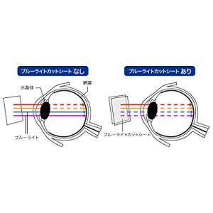 OverLay Eye Protector for Newニンテンドー3DS LL『上・下セット』 ...