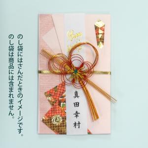 名入れのし袋用短冊金箔結婚お祝いセット|librorianet|03