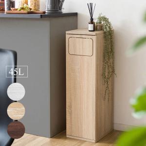 【送料無料】ダストボックス Empro(エンプロー) ゴミ箱 DB-800  ダストボックス※メーカー直送の為代引き・同送できません。収納  北欧|licept