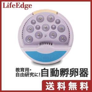 自動孵卵器 インキュベーター 家庭用 小型鳥類専用孵卵器 子供教育用 自由研究 日本語説明書付