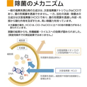 電解水 次亜塩素酸 業務用消臭除菌水 ジョパル   1リットル(希釈不要)/K.Sファクトリー|life-on|04