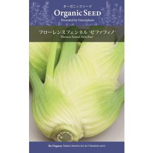 オーガニック 西洋野菜種子 フローレンスフェンネル ゼファフィノ [大森プランツ] life-with-green