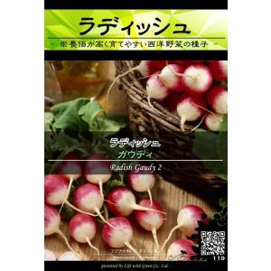 西洋野菜種子 ラディッシュ ガウディー | 二十日大根 紅白 [Life with Green]|life-with-green