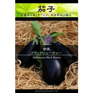 西洋野菜種子 ナス ブラックビューティー [Life with Green]|life-with-green