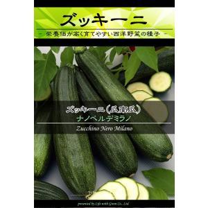 西洋野菜種子 ズッキーニ ナノベルデミラノ [Life with Green]|life-with-green