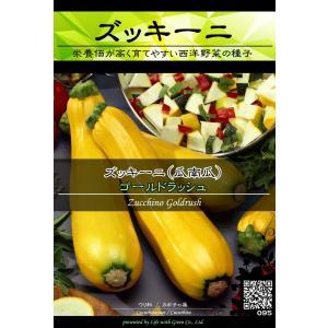 西洋野菜種子 ズッキーニ ゴールドラッシュ (黄実) ×3袋【送料無料】 [Life with Green]|life-with-green