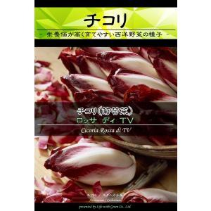 西洋野菜種子 チコリ ロッサディTV | 赤色と白色のコントラスト サラダの彩りに [Life with Green]|life-with-green