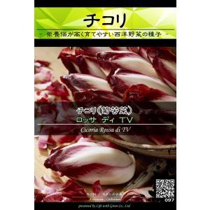 西洋野菜種子 チコリ ロッサディTV ×3袋【送料無料】 [Life with Green]|life-with-green