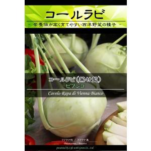 西洋野菜種子 コールラビ ビアンコ [Life with Green]|life-with-green