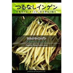 西洋野菜種子 つるなしインゲン ブライトルワックス [Life with Green]|life-with-green