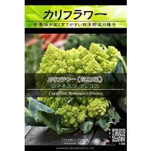 西洋野菜種子 カリフラワー ロマネスコプレコス (サンゴ型) ×3袋【送料無料】 [Life with Green]|life-with-green