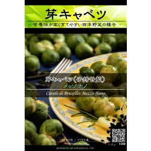 西洋野菜種子 芽キャベツ メッゾナノ ×3袋【送料無料】 [Life with Green]|life-with-green